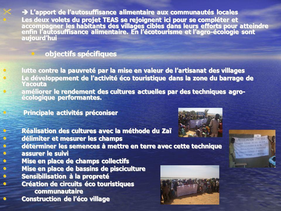 Impact du projet sur la population locale et cible Le projet TEAS compte mettre en place, au sein de lecovillage, des champs biologiques, une pépinière, des champs maraîchers et développer les techniques de pisciculture dans le barrage.