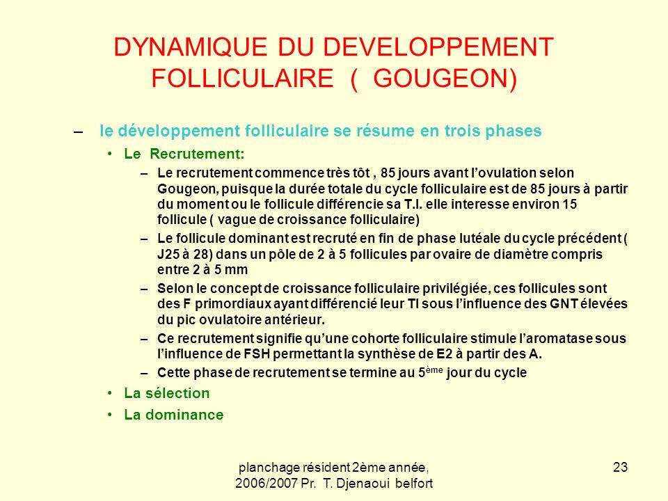 planchage résident 2ème année, 2006/2007 Pr. T. Djenaoui belfort 23 DYNAMIQUE DU DEVELOPPEMENT FOLLICULAIRE ( GOUGEON) – le développement folliculaire