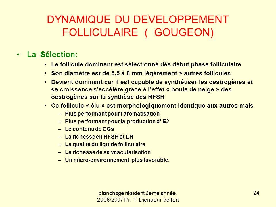 planchage résident 2ème année, 2006/2007 Pr. T. Djenaoui belfort 24 DYNAMIQUE DU DEVELOPPEMENT FOLLICULAIRE ( GOUGEON) La Sélection: Le follicule domi