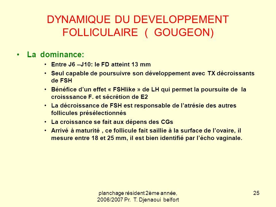 planchage résident 2ème année, 2006/2007 Pr. T. Djenaoui belfort 25 DYNAMIQUE DU DEVELOPPEMENT FOLLICULAIRE ( GOUGEON) La dominance: Entre J6 –J10: le