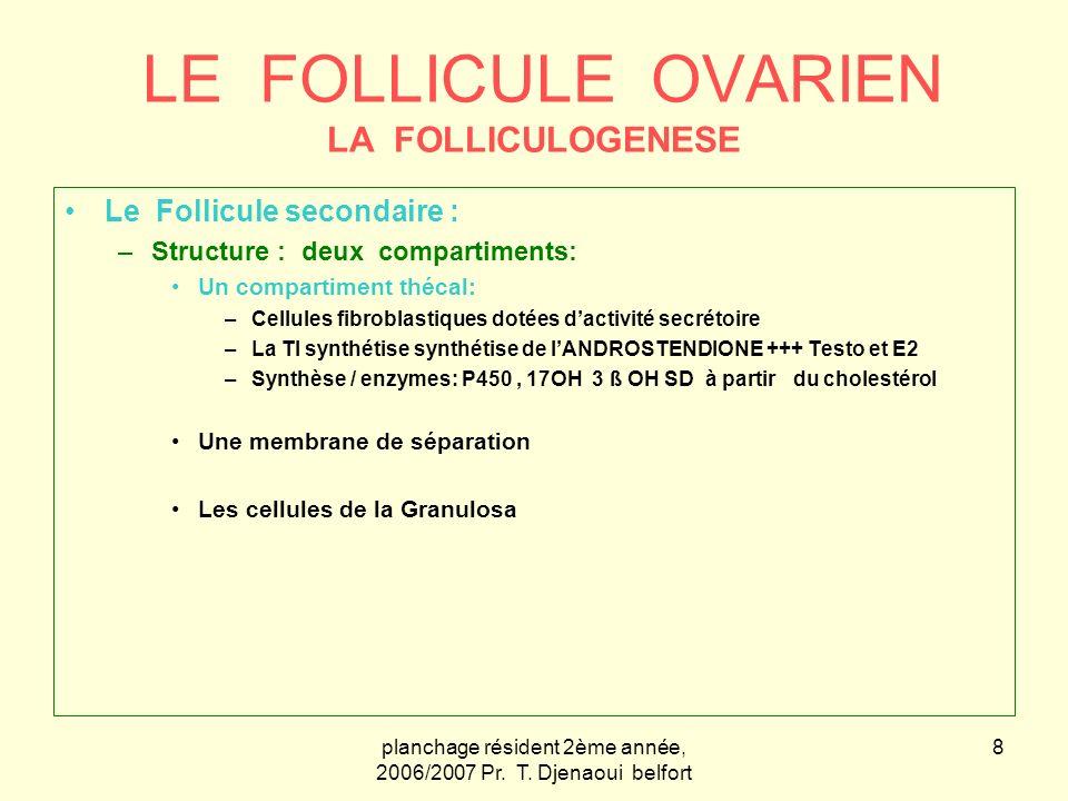 planchage résident 2ème année, 2006/2007 Pr. T. Djenaoui belfort 19 Le follicule Ovarien
