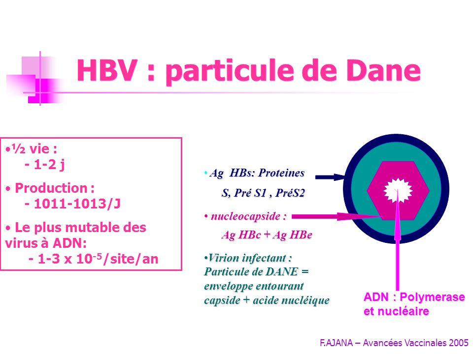 F.AJANA – Avancées Vaccinales 2005 HBV : particule de Dane Ag HBs: Proteines S, Pré S1, PréS2 Ag HBs: Proteines S, Pré S1, PréS2 nucleocapside : Ag HBc + Ag HBe nucleocapside : Ag HBc + Ag HBe Virion infectant : Particule de DANE = enveloppe entourant capside + acide nucléiqueVirion infectant : Particule de DANE = enveloppe entourant capside + acide nucléique ADN : Polymerase et nucléaire ½ vie : - 1-2 j Production : - 1011-1013/J Le plus mutable des virus à ADN: - 1-3 x 10 -5 /site/an