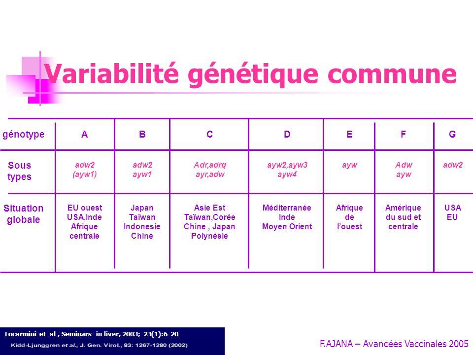 F.AJANA – Avancées Vaccinales 2005 Les variants VHB -1- Conséquences virologiques de la variabilité génomique : Communes: Génotypes - sous types Diffé
