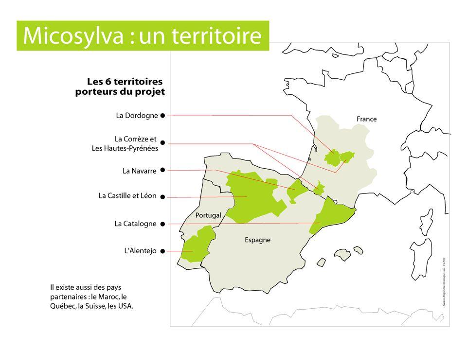 Les systèmes racinaires sont associés à plusieurs dizaines despèces de champignons qui fournissent lalimentation en eau et en éléments minéraux aux arbres Prendre en compte les champignons dans les futurs modes de gestion forestière Evolution de la gestion forestière Objectifs Réaliser un transfert de connaissances sur la biologie des champignons vers la gestion forestière - Réseau de coopération - Guide de mycosylviculture 18 sites de démonstration 18 massifs forestiers - Développer des programmes et des outils de formation à destination : des Propriétaires forestiers des Techniciens du Grand public