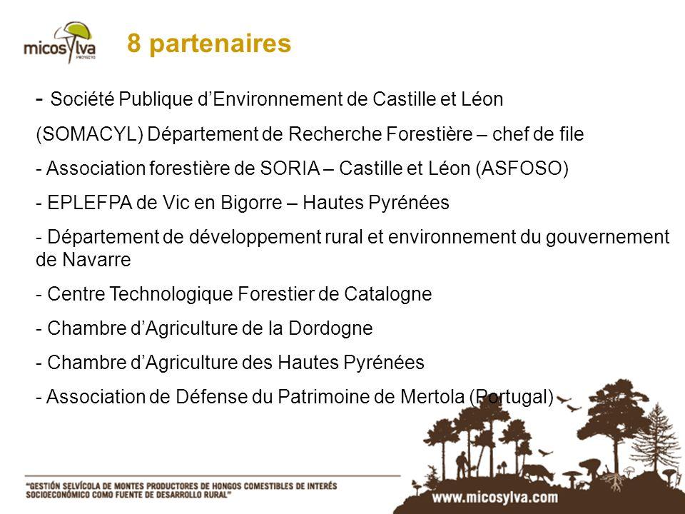 8 partenaires - Société Publique dEnvironnement de Castille et Léon (SOMACYL) Département de Recherche Forestière – chef de file - Association foresti