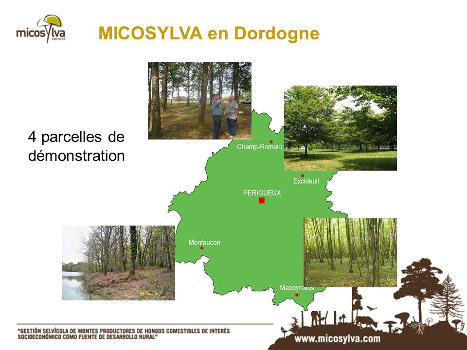 4 parcelles de démonstration MICOSYLVA en Dordogne