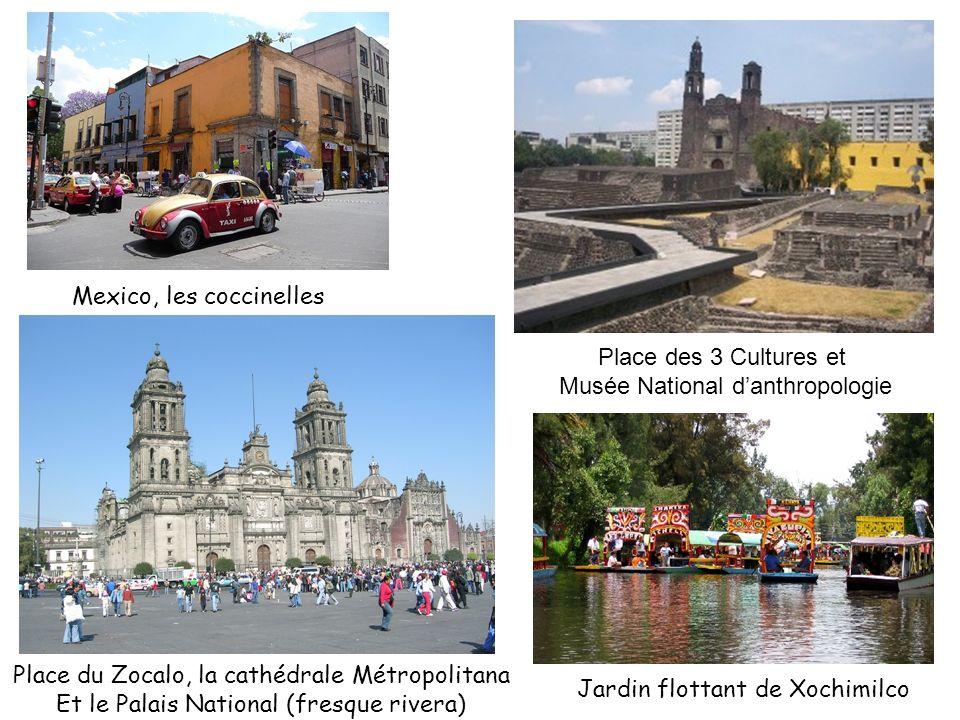 Mexico, les coccinelles Place du Zocalo, la cathédrale Métropolitana Et le Palais National (fresque rivera) Place des 3 Cultures et Musée National dan
