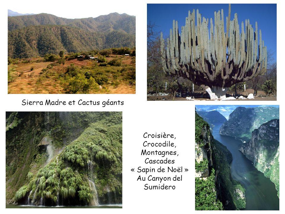 Sierra Madre et Cactus géants Croisière, Crocodile, Montagnes, Cascades « Sapin de Noël » Au Canyon del Sumidero