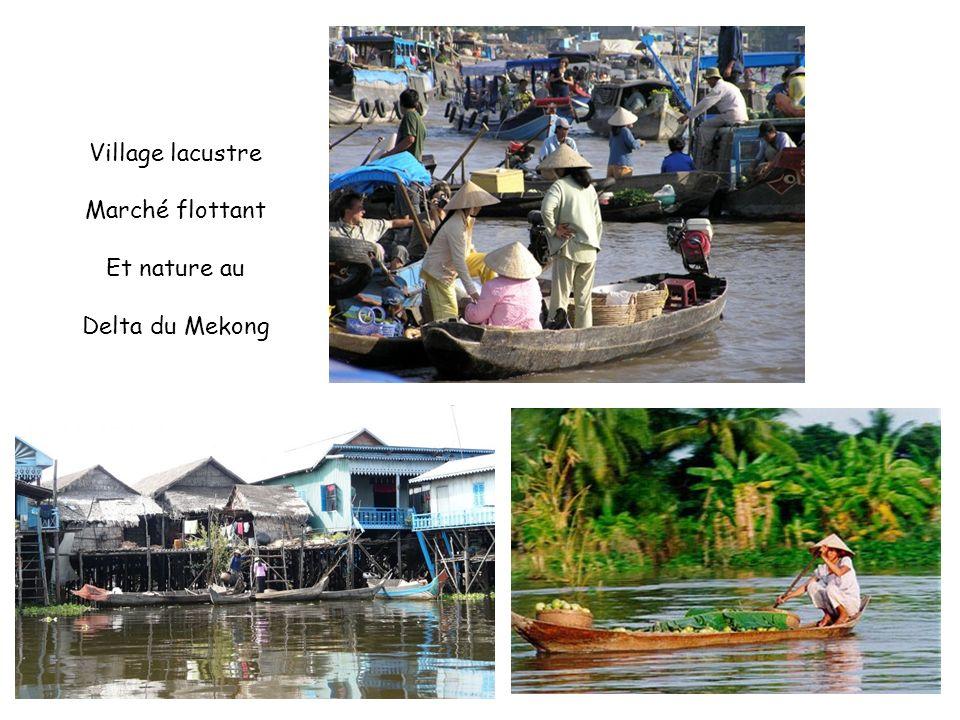 Village lacustre Marché flottant Et nature au Delta du Mekong