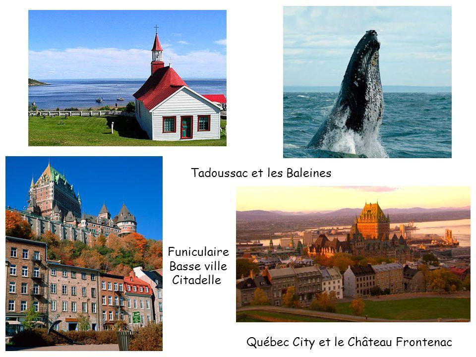 Tadoussac et les Baleines Québec City et le Château Frontenac Funiculaire Basse ville Citadelle