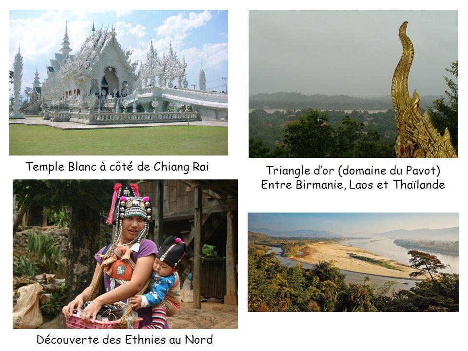 Temple Blanc à côté de Chiang Rai Triangle dor (domaine du Pavot) Entre Birmanie, Laos et Thaïlande Découverte des Ethnies au Nord