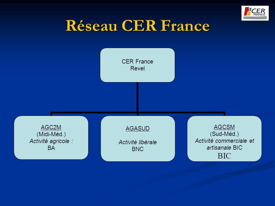 Réseau CER France CER France Revel AGC2M (Midi-Méd.) Activité agricole : BA AGASUD Activité libérale BNC AGCSM (Sud-Méd.) Activité commerciale et arti
