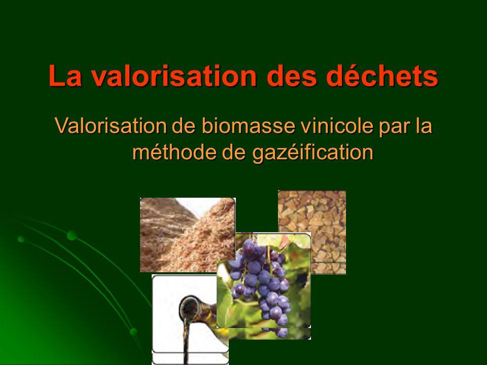 La valorisation des déchets Valorisation de biomasse vinicole par la méthode de gazéification