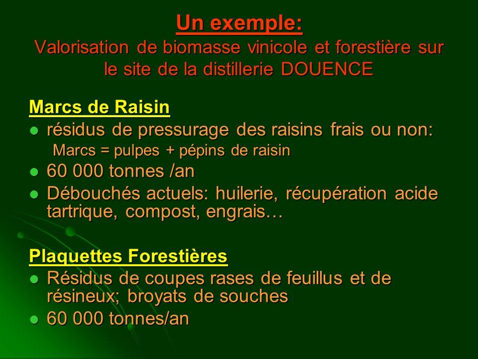 Un exemple: Valorisation de biomasse vinicole et forestière sur le site de la distillerie DOUENCE Marcs de Raisin résidus de pressurage des raisins fr