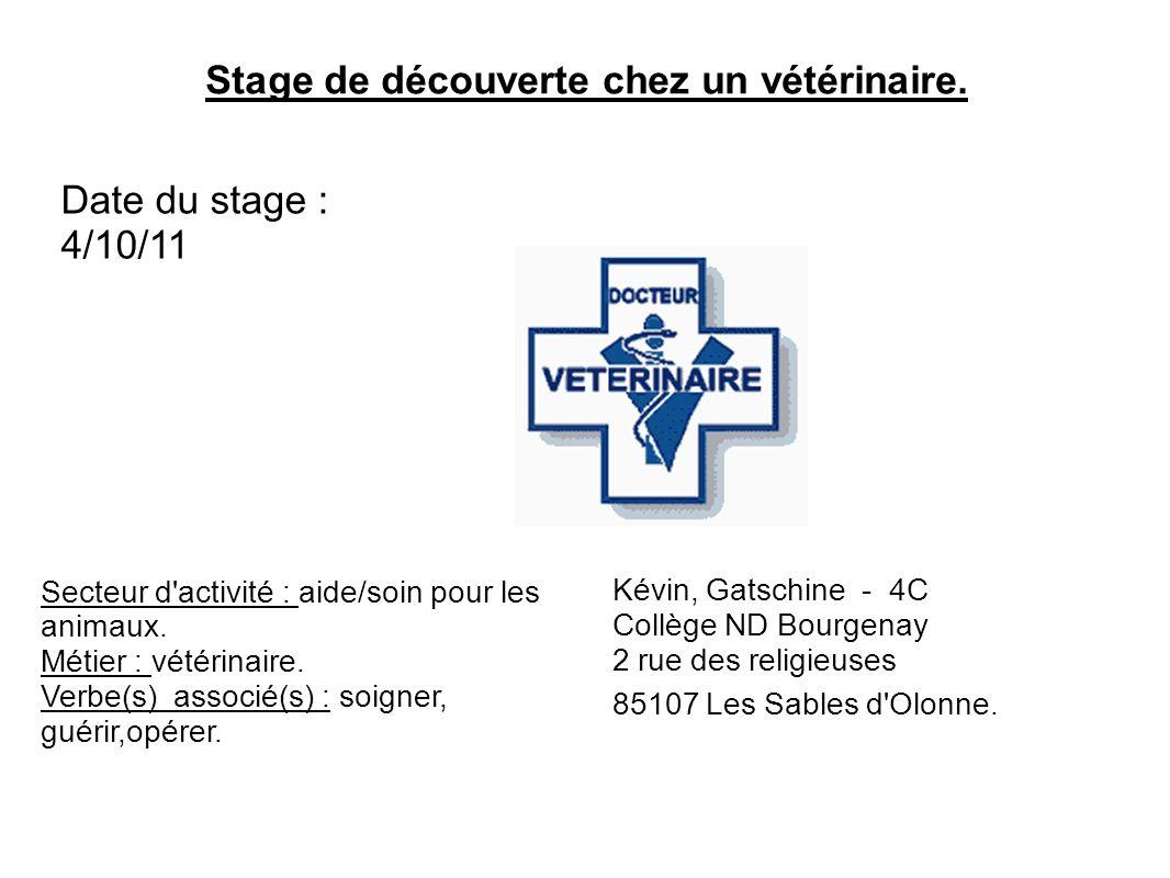 Stage de découverte chez un vétérinaire. Date du stage : 4/10/11 Secteur d'activité : aide/soin pour les animaux. Métier : vétérinaire. Verbe(s) assoc