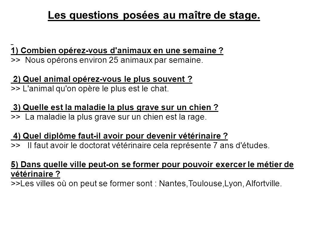 Les questions posées au maître de stage. 1) Combien opérez-vous d'animaux en une semaine ? >> Nous opérons environ 25 animaux par semaine. 2) Quel ani