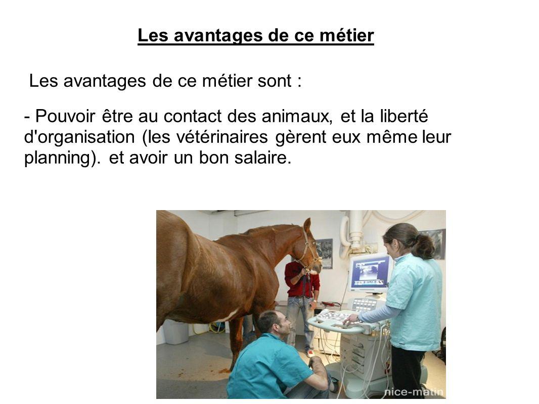 Les avantages de ce métier Les avantages de ce métier sont : - Pouvoir être au contact des animaux, et la liberté d'organisation (les vétérinaires gèr