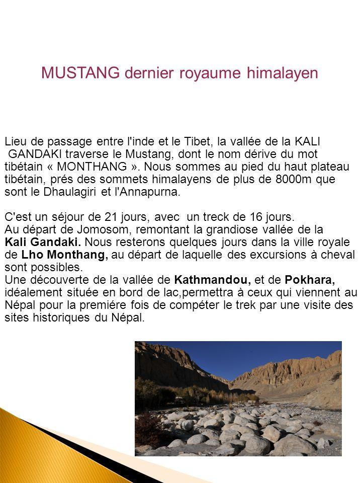DEROULEMENT DU VOYAGE Trek AU MUSTANG Lencadrement : Guide de haute montagne, je partage depuis 15 ans mon activité professionnelle entre les Alpes où jexerce le ski et lalpinisme et l organisation de treks en Himalaya (Népal, Tibet ),et au Maroc où jaccompagne des groupes.