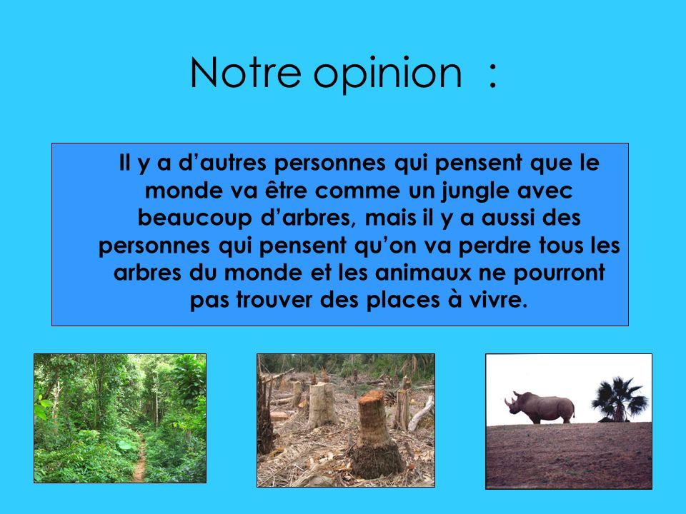 Notre opinion : Il y a dautres personnes qui pensent que le monde va être comme un jungle avec beaucoup darbres, mais il y a aussi des personnes qui pensent quon va perdre tous les arbres du monde et les animaux ne pourront pas trouver des places à vivre.