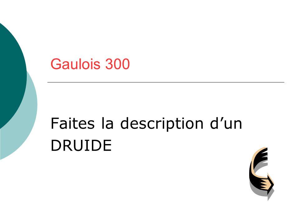 Gaulois 300 Faites la description dun DRUIDE