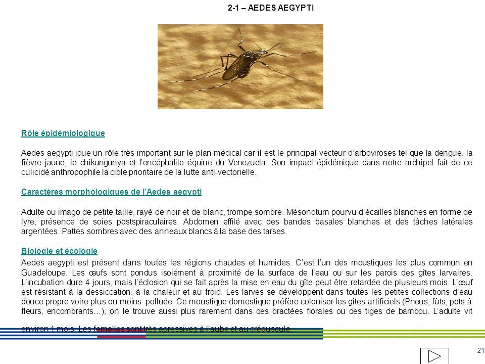 20 3-1 - Modèle de mise en demeure Réponse au plaignant AU PLAIGNANT : INFORMATION DE LA MISE EN DEMEURE ENGAGEE AUPRES DE LOCCUPANT AUTEUR DE LA NUIS