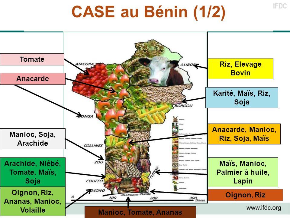 IFDC CASE au Bénin (1/2) Maïs, Manioc, Palmier à huile, Lapin Arachide, Niébé, Tomate, Maïs, Soja Anacarde Anacarde, Manioc, Riz, Soja, Maïs Manioc, T