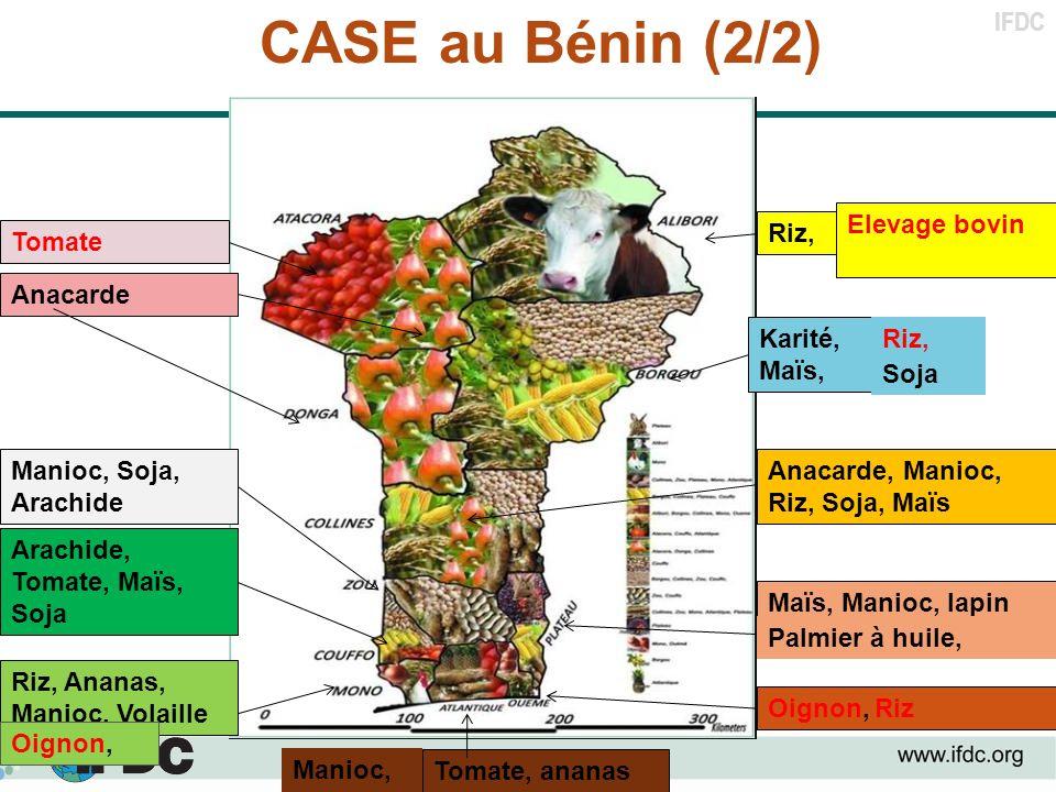 IFDC CASE au Bénin (2/2) Maïs, Manioc, lapin Arachide, Tomate, Maïs, Soja Anacarde Anacarde, Manioc, Riz, Soja, Maïs Tomate, ananas Riz, Ananas, Manio