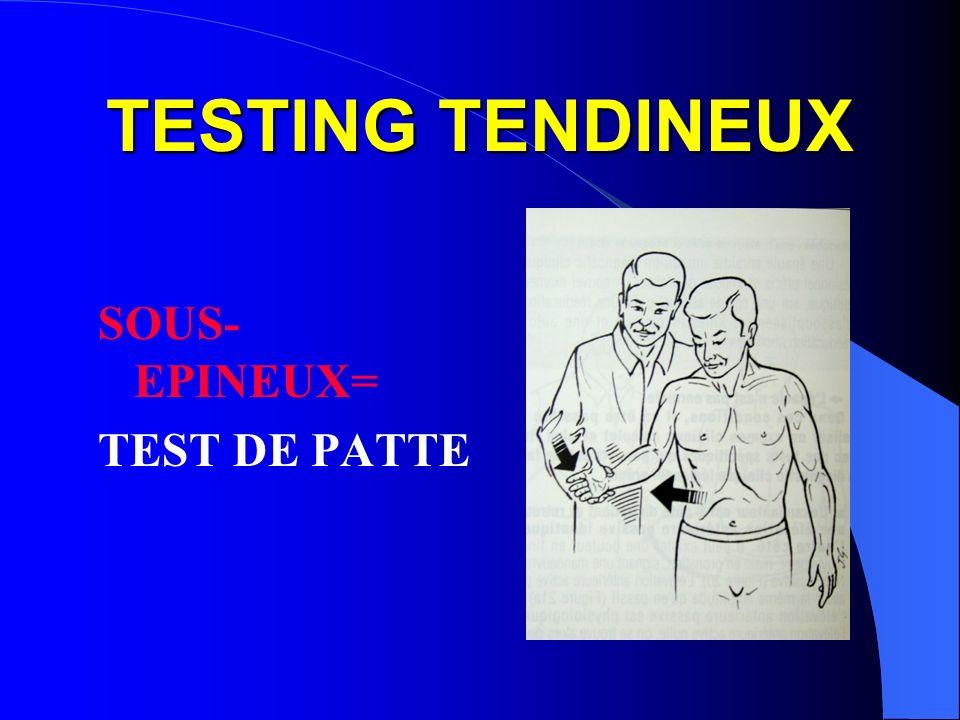 TESTING TENDINEUX SOUS- EPINEUX= TEST DE PATTE