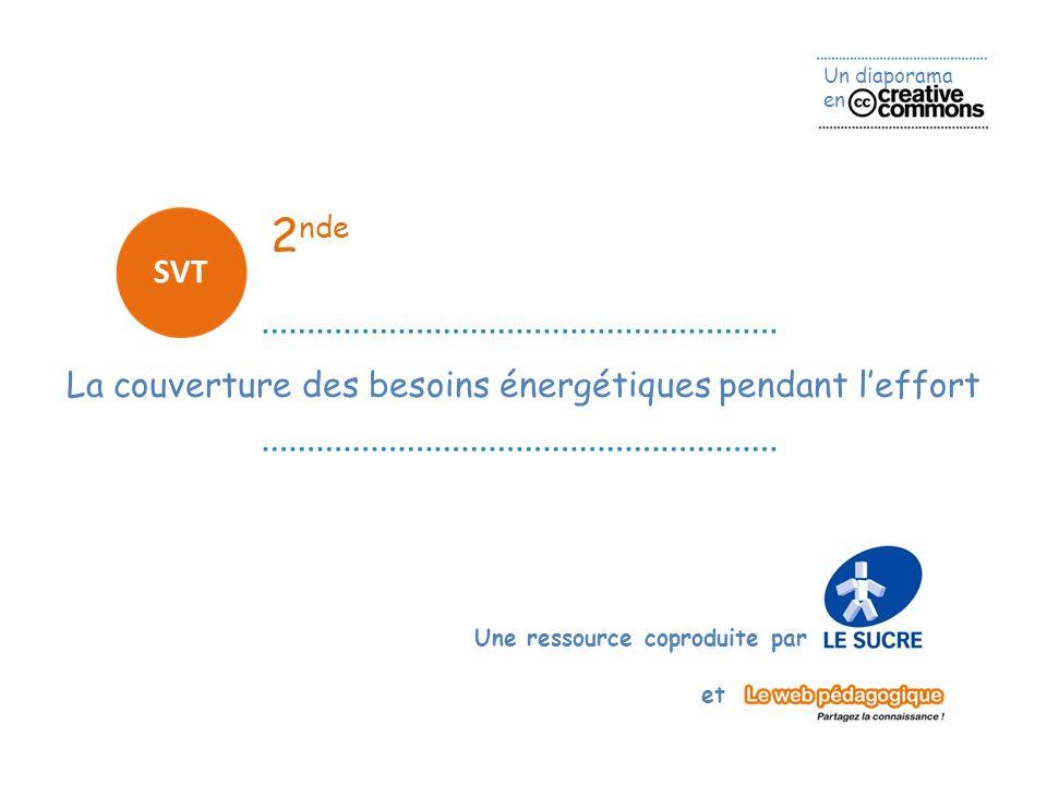 Un diaporama en Une ressource coproduite par et 2 nde SVT La couverture des besoins énergétiques pendant leffort