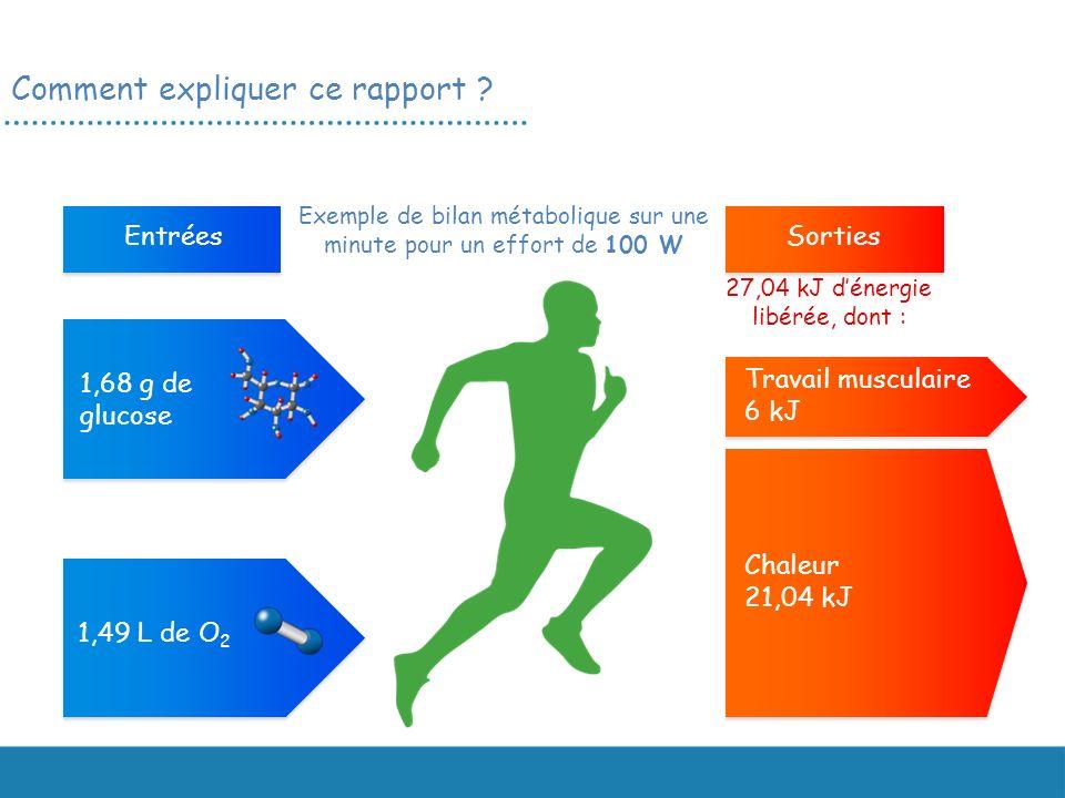 EntréesSorties 1,68 g de glucose 1,49 L de O 2 Travail musculaire 6 kJ Chaleur 21,04 kJ Exemple de bilan métabolique sur une minute pour un effort de