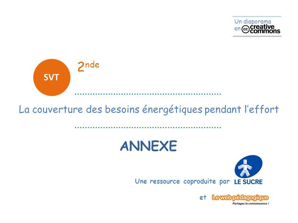 Un diaporama en Une ressource coproduite par et 2 nde SVT ANNEXE La couverture des besoins énergétiques pendant leffort