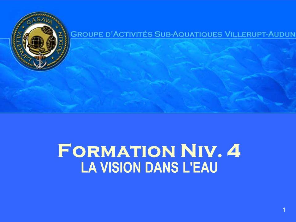 1 Formation Niv. 4 LA VISION DANS L'EAU