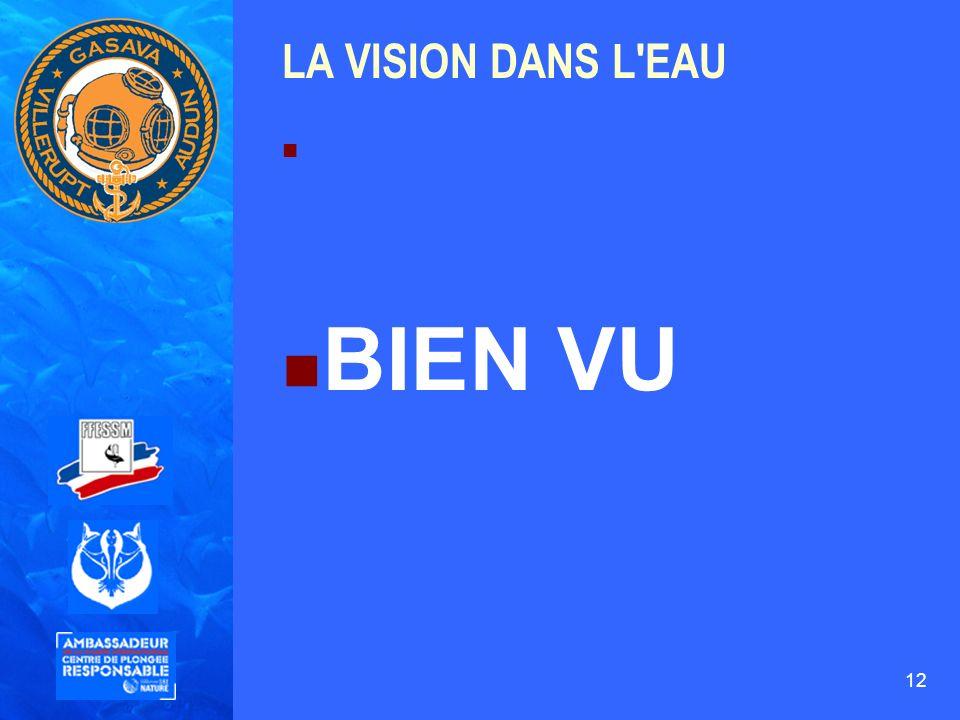12 LA VISION DANS L'EAU BIEN VU