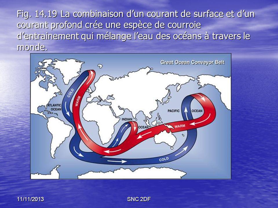 Fig. 14.19 La combinaison dun courant de surface et dun courant profond crée une espèce de courroie dentrainement qui mélange leau des océans à traver