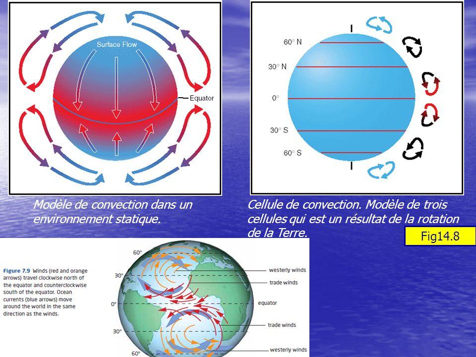 11/11/2013SNC 2DF Cellule de convection. Modèle de trois cellules qui est un résultat de la rotation de la Terre. Modèle de convection dans un environ