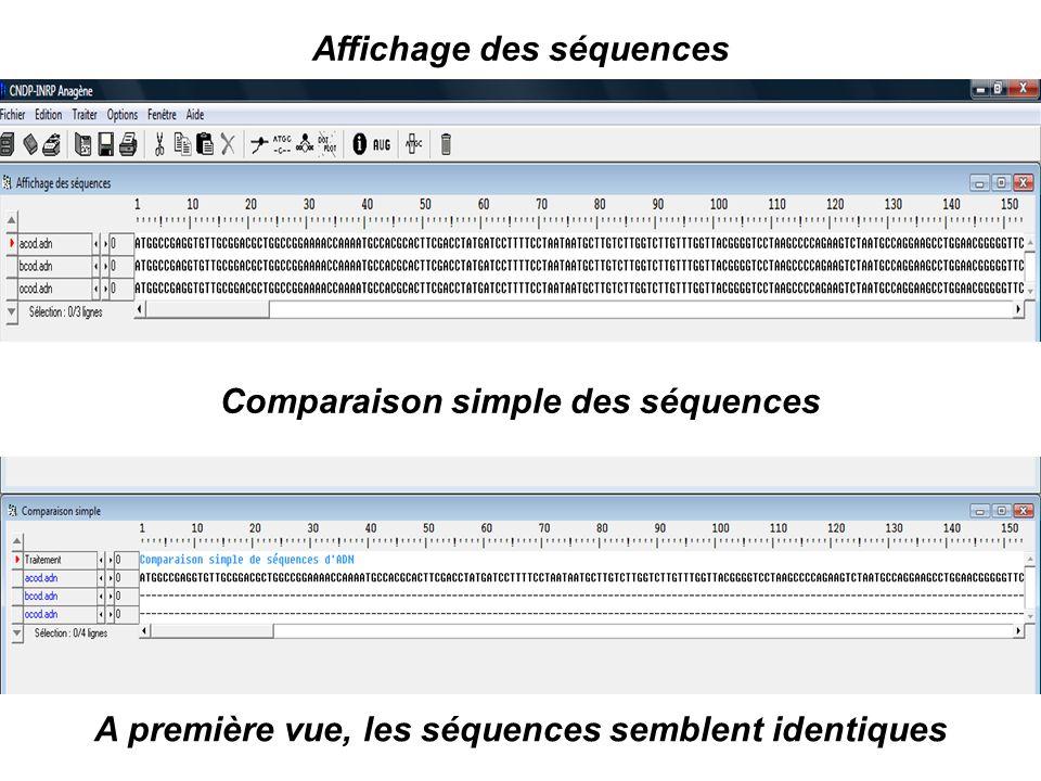 Affichage des séquences Comparaison simple des séquences A première vue, les séquences semblent identiques