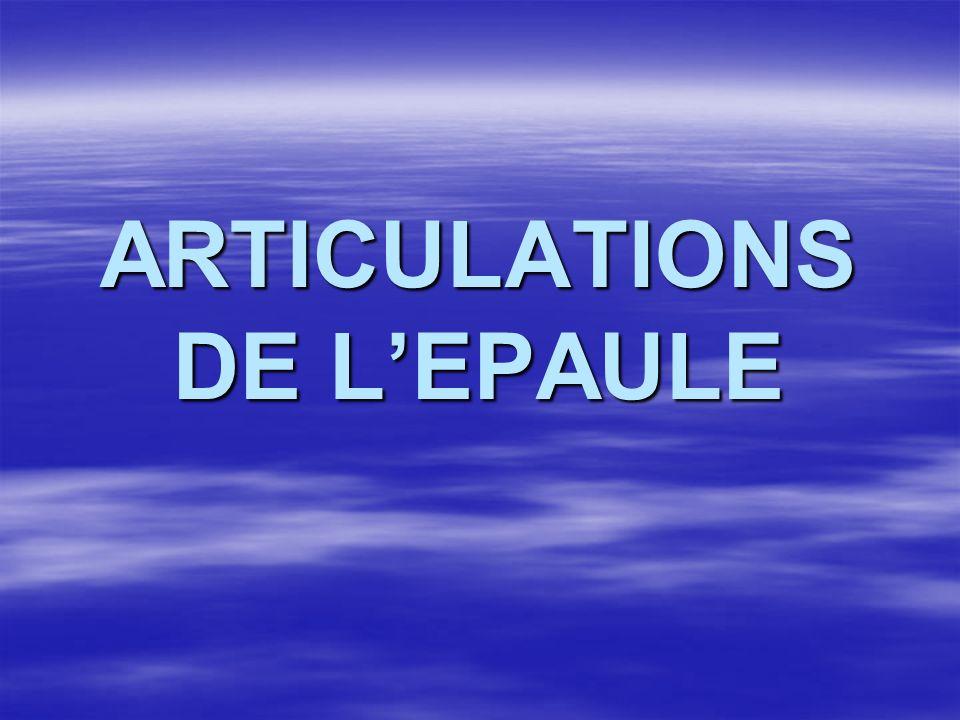 ARTICULATIONS DE LEPAULE
