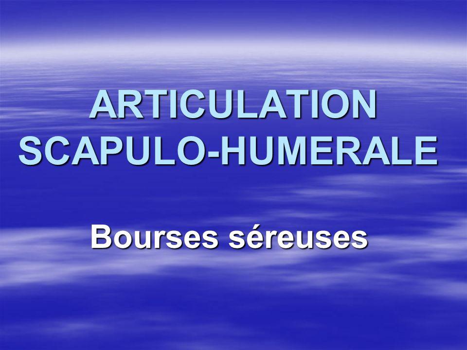 ARTICULATION SCAPULO-HUMERALE ARTICULATION SCAPULO-HUMERALE Bourses séreuses Bourses séreuses