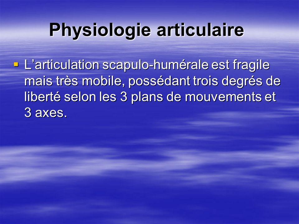 Larticulation scapulo-humérale est fragile mais très mobile, possédant trois degrés de liberté selon les 3 plans de mouvements et 3 axes. Larticulatio