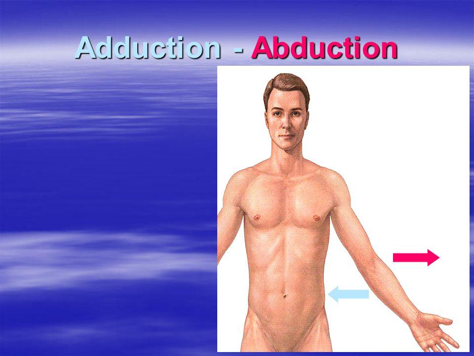 Adduction - Abduction