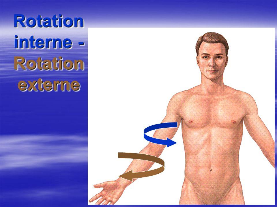 Rotation interne - Rotation externe