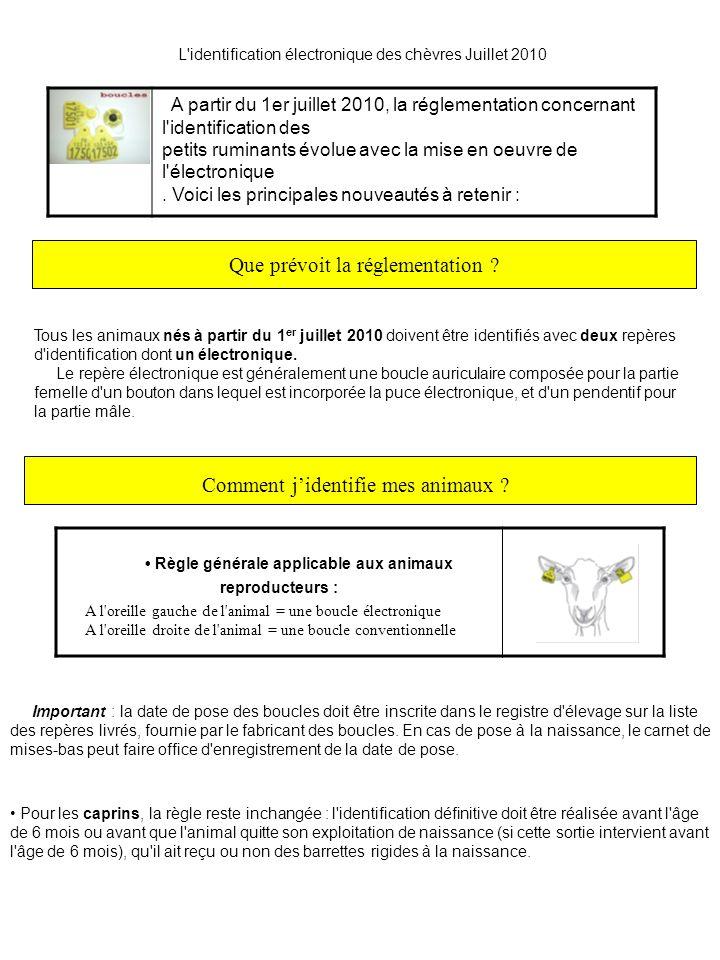 L'identification électronique des chèvres Juillet 2010 : Que prévoit la réglementation ? Tous les animaux nés à partir du 1 er juillet 2010 doivent êt