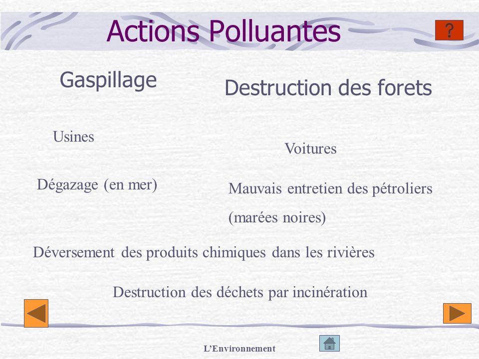 LEnvironnement Actions Polluantes Gaspillage Destruction des forets Usines Voitures Dégazage (en mer) Destruction des déchets par incinération Mauvais