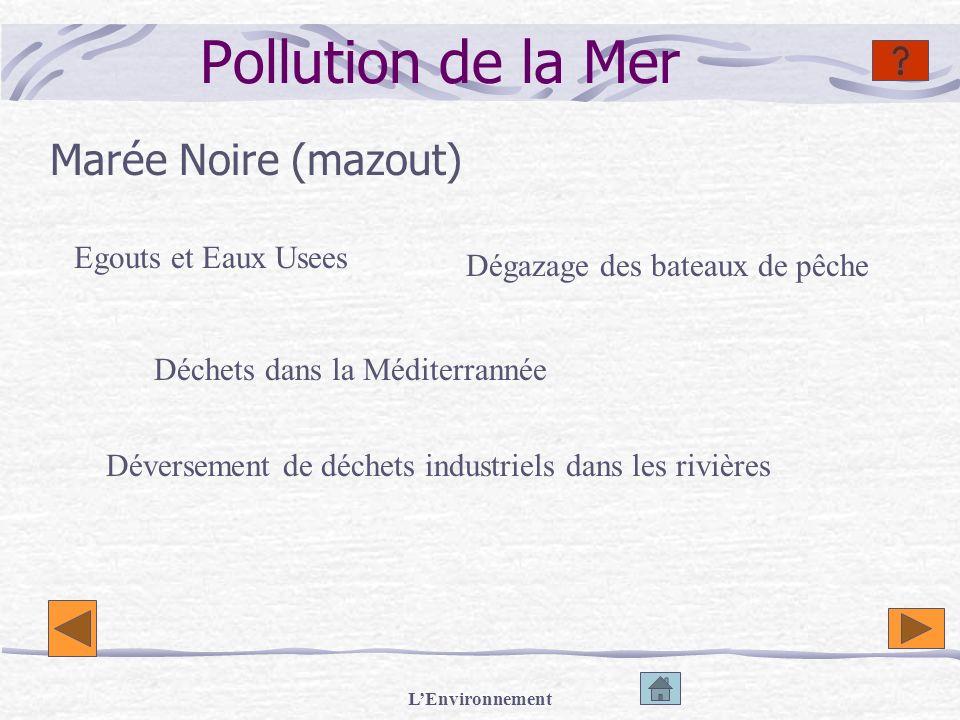 LEnvironnement Pollution de la Mer Marée Noire (mazout) Egouts et Eaux Usees Déchets dans la Méditerrannée Dégazage des bateaux de pêche Déversement d
