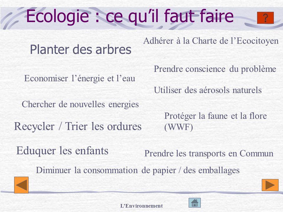LEnvironnement Ecologie : ce quil faut faire Planter des arbres Economiser lénergie et leau Chercher de nouvelles energies Recycler / Trier les ordure