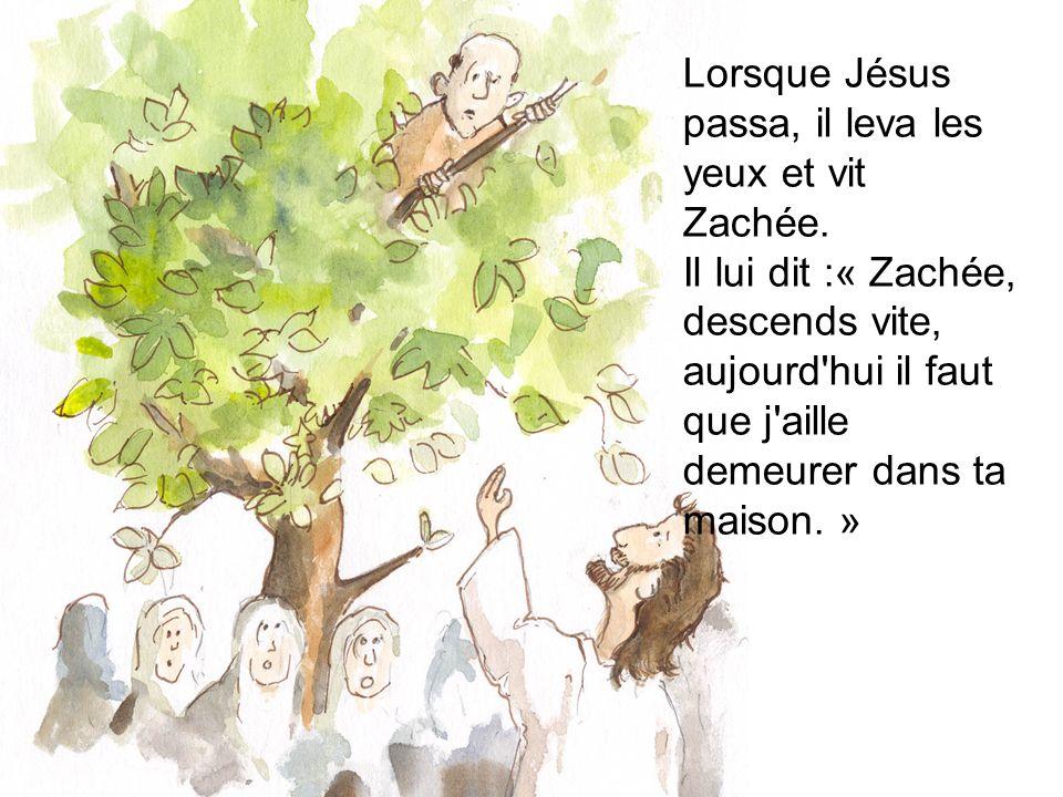 Lorsque Jésus passa, il leva les yeux et vit Zachée. Il lui dit :« Zachée, descends vite, aujourd'hui il faut que j'aille demeurer dans ta maison. »