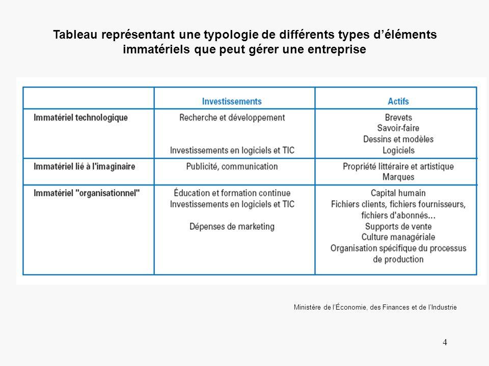 4 Tableau représentant une typologie de différents types déléments immatériels que peut gérer une entreprise Ministère de lÉconomie, des Finances et d