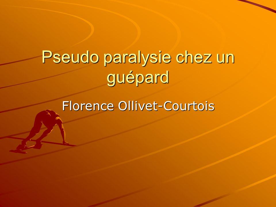 Pseudo paralysie chez un guépard Florence Ollivet-Courtois