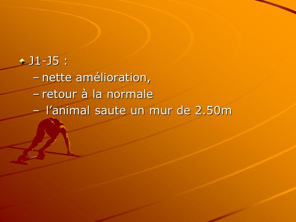 J1-J5 : –nette amélioration, –retour à la normale – lanimal saute un mur de 2.50m