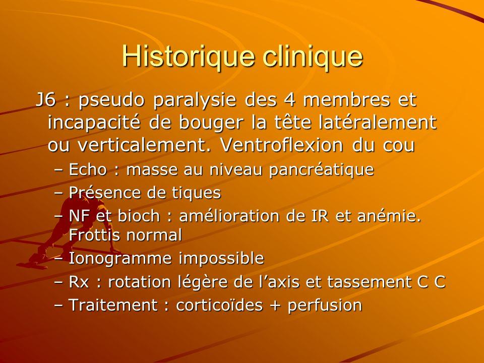 Historique clinique J6 : pseudo paralysie des 4 membres et incapacité de bouger la tête latéralement ou verticalement. Ventroflexion du cou J6 : pseud